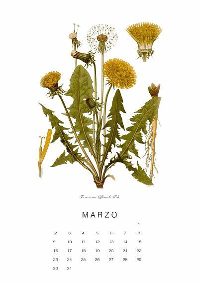 calendario-planthae3